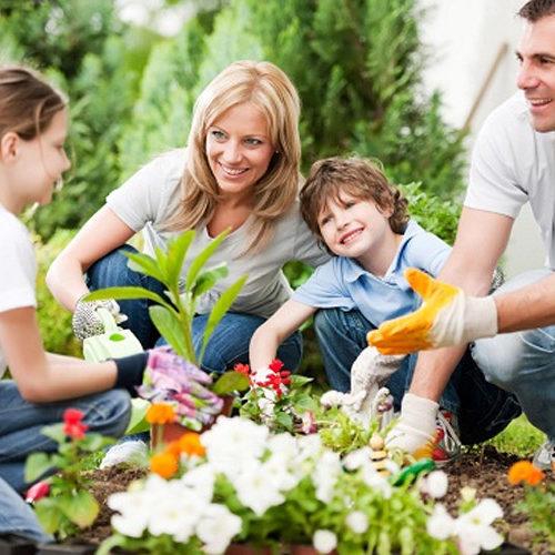 The 'Eco-Family'